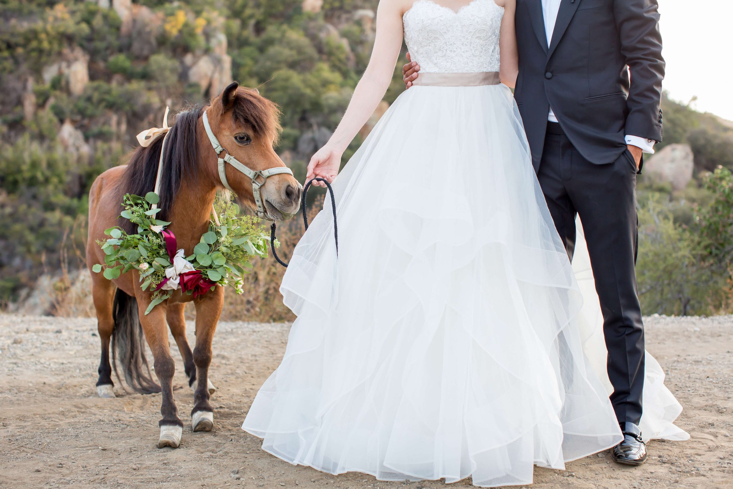 Animation mariage champêtre avec un poney